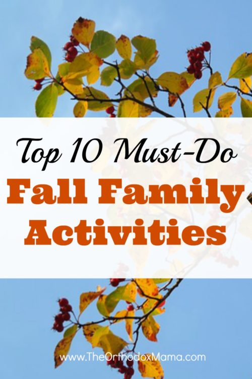 10 Must Have Makeup Palettes For 2017: Top 10 Must-Do Fall Family Activities